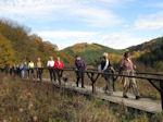Nordic-Walking im Sahrbachtal