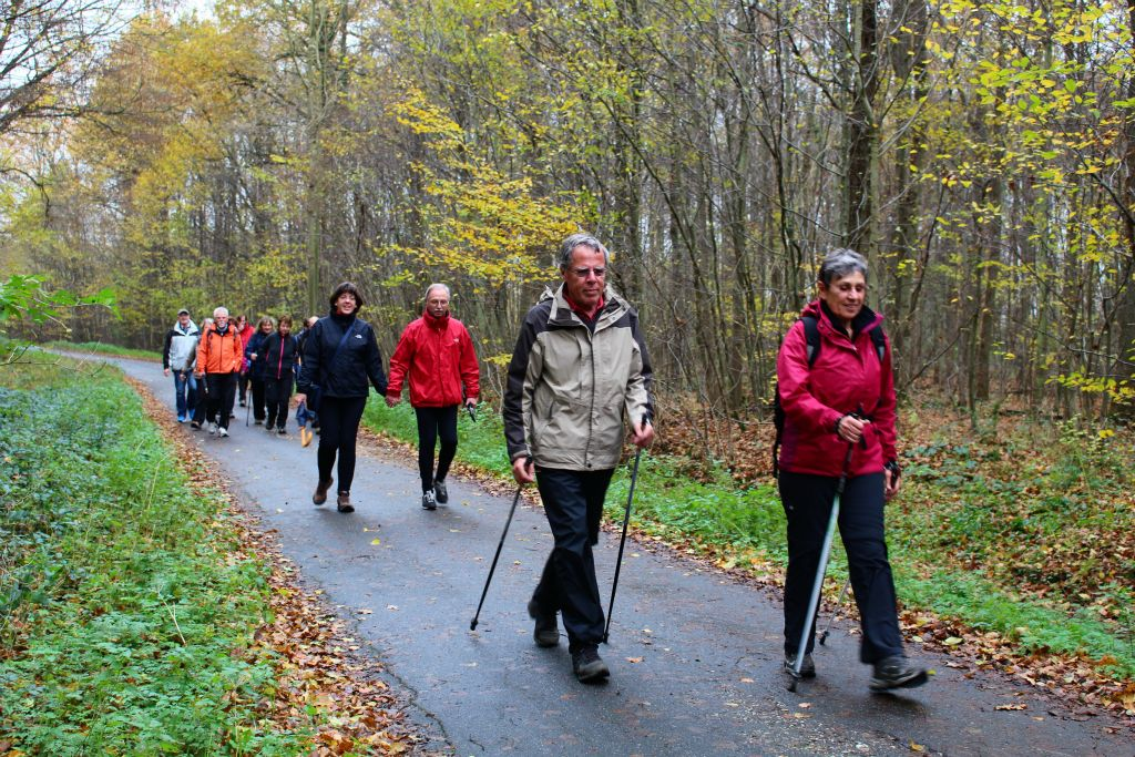 Nordic-Walking im Kottenforst