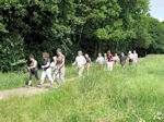 Nordic Walking Tour durch die Weinberge an der Ahr