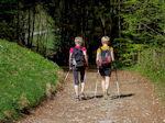 Nordic-Walking - Nutze die schönste Zeit des Jahres